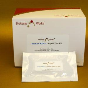 Human Rena-strip Kit, 25 tests